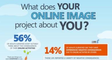 Online Reputation Management Survey Results